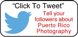 Click to tell your Twitter followers about Puerto Rico Photography